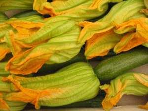 zucchiniflowers